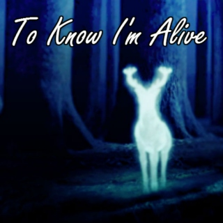 To Know I'm Alive