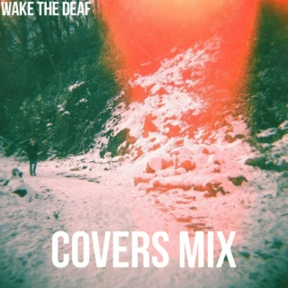 Covers Mix Volume #13