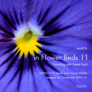 AW 2014-15 #24 in Flower Beds 11 - Traveling with Sweet Soul