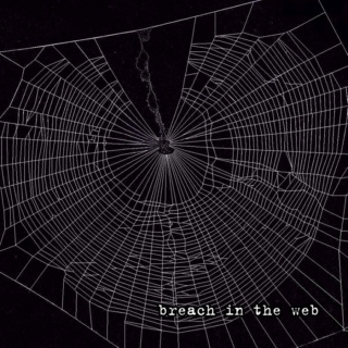 breach in the web