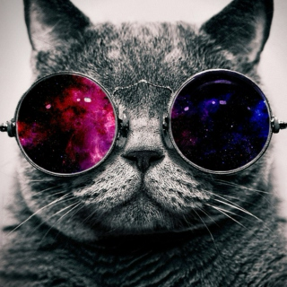 Story of the Curious Space-Cat