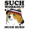 Workout (Kevin)