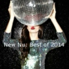 New Nu: Best of 2014