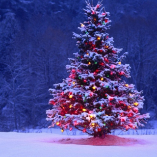 Best of the Best Holiday Songs