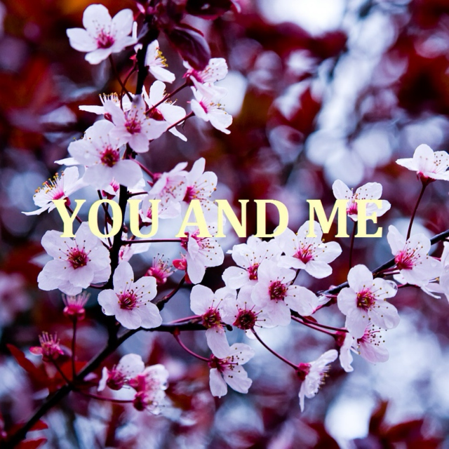 Songs for You and Me