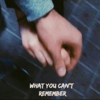 what you can't remember