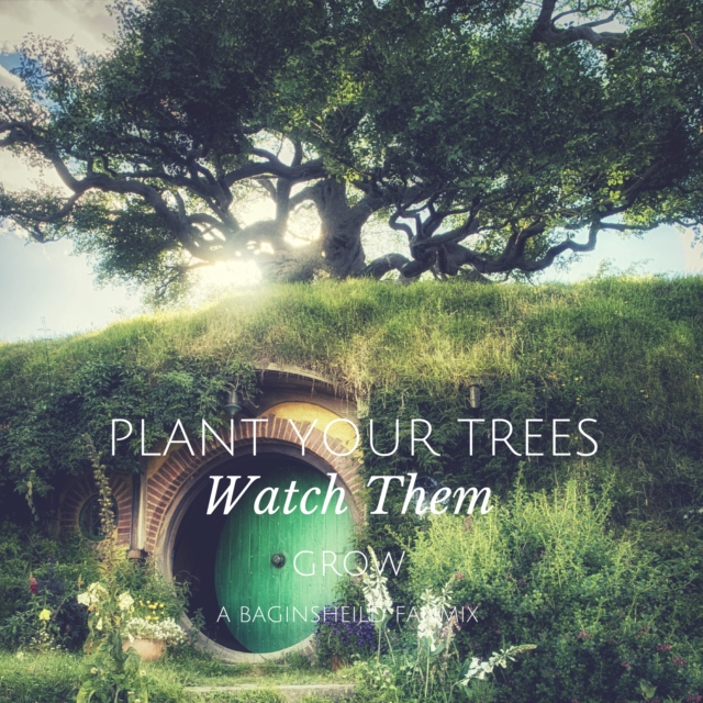 Plant Your Trees, Watch Them Grow