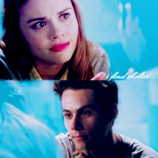 stydia || i find shelter