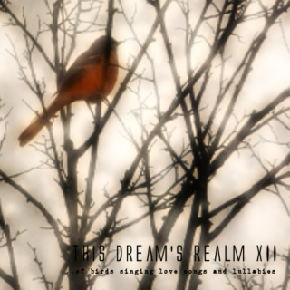 this dream's realm XII - ...of birds singing love songs and lullabies