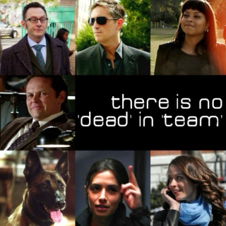 there is no 'dead' in 'team'