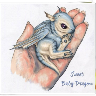 Sweet Baby Dragon