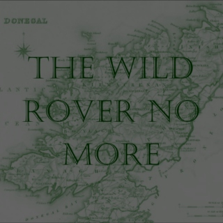 the wild rover no more