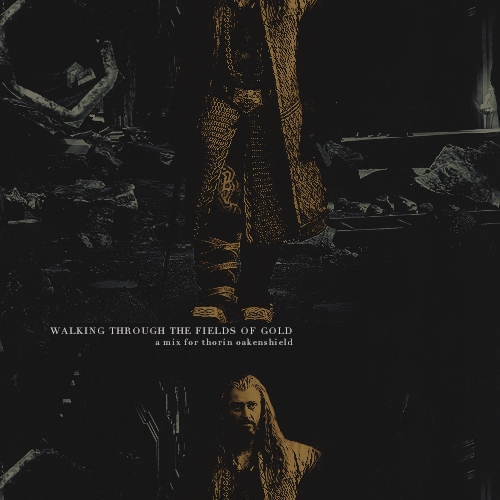 walking through the fields of gold – a thorin oakenshield fanmix