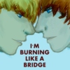 i'm burning like a bridge
