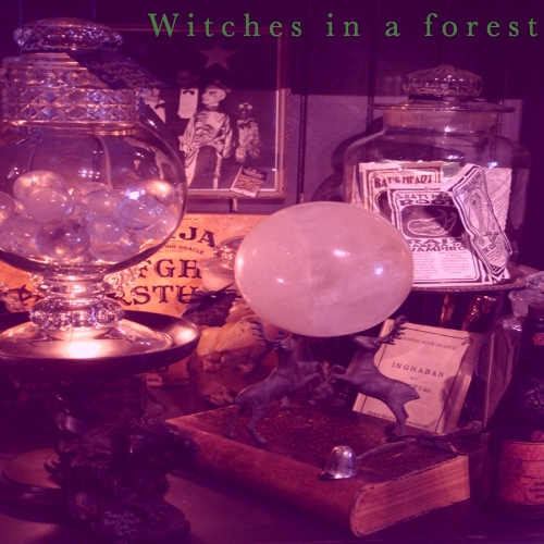 Witches In A Forest