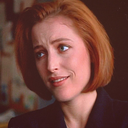 odes to dana katherine scully, FBI