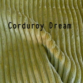 Corduroy Dream