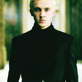 the slytherin king Draco