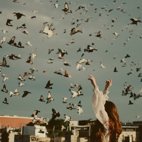 JUST SPREAD YOUR WINGS