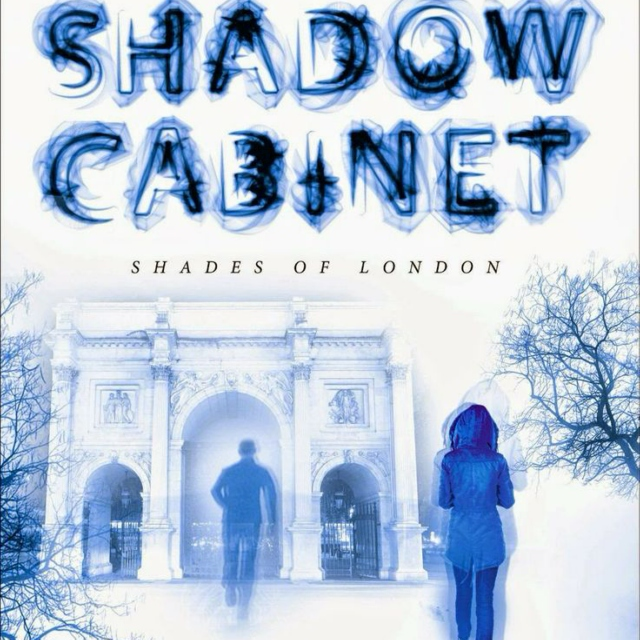 Guided by Love and a Flashlight -- The Shadow Cabinet