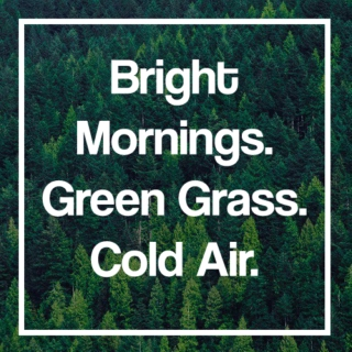 • bright mornings, green grass, cold air •