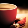 [A cup of comfort]
