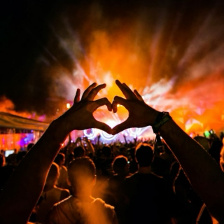 EDM Scarred Hearts