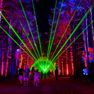 Electric Forest 2015 (#2)