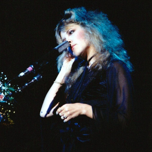 the magical delights of stevie nicks.