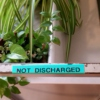 not discharged