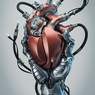 The Mechanics of Heart