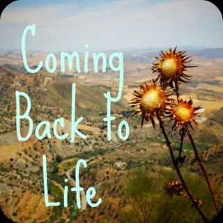 Coming Back to Life: Earth Healing