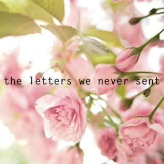 the letters we never sent