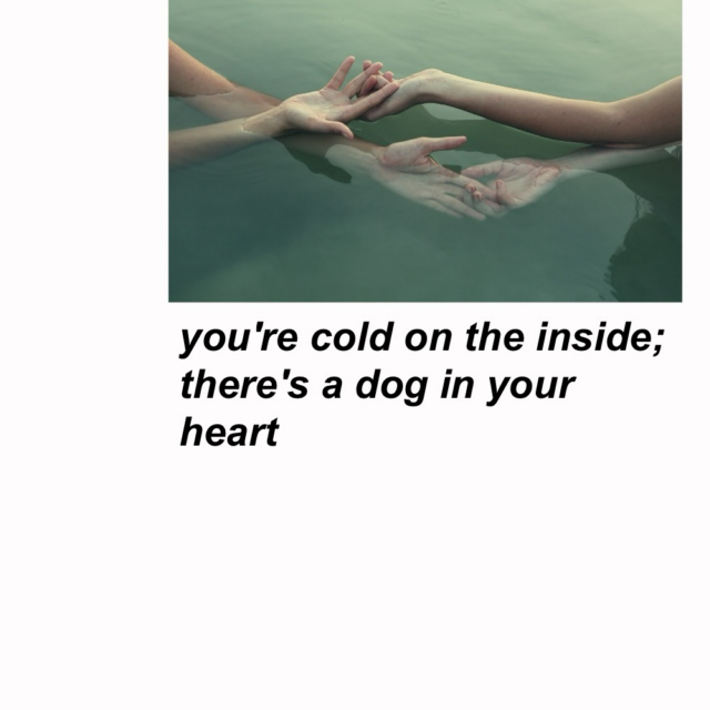 you're cold on the inside; there's a dog in your heart