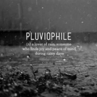 ☔ raindrops are the perfect lullaby ☔