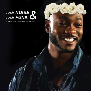 the noise & the funk