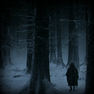 The Winter of the Great Dark Woodland