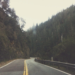 Misty Mountain Roads