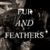 ❝fur and feathers❞