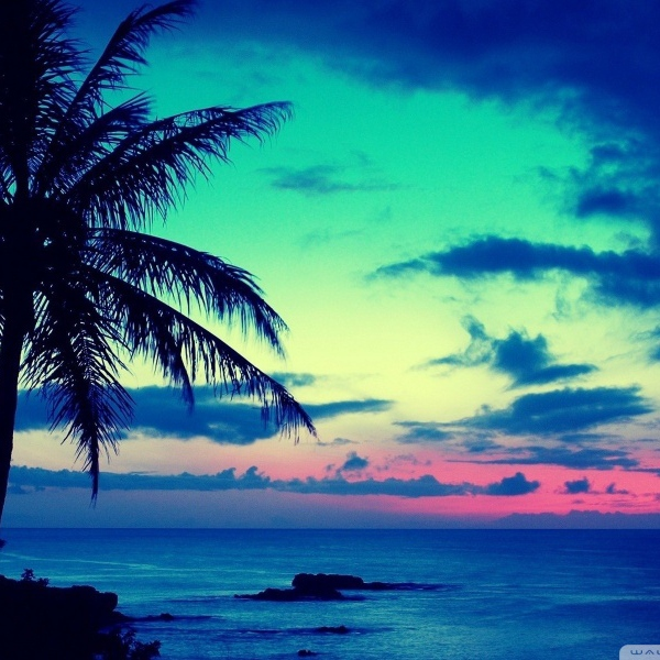 8tracks radio tropical summer vol 1 8 songs free and for House music girls