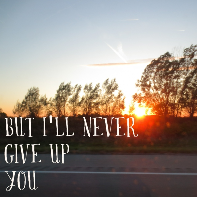 But I'll Never Give Up You