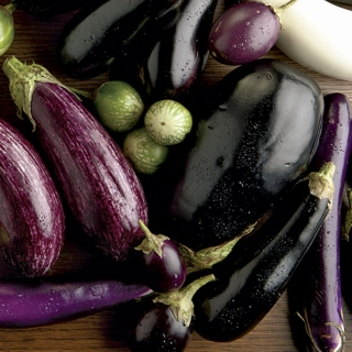 Eggplants Have the Most Poetic Purple