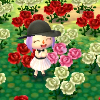 smell the roses ❀ ❁ ❃