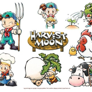 Harvest Moon Seasons
