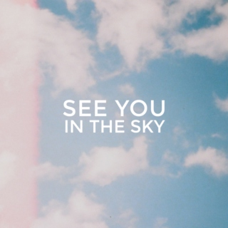 see you in the sky