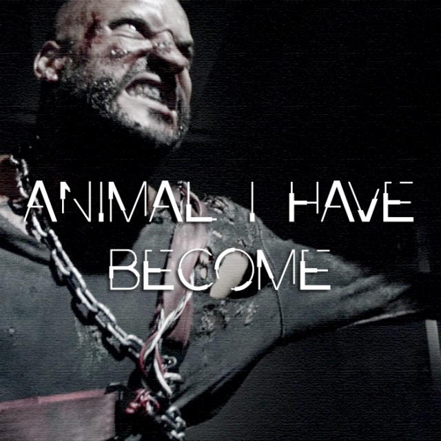 lincoln  //  animal I have become