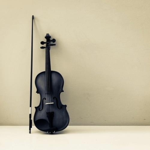 Happiness is a thing to be practiced, like the violin.