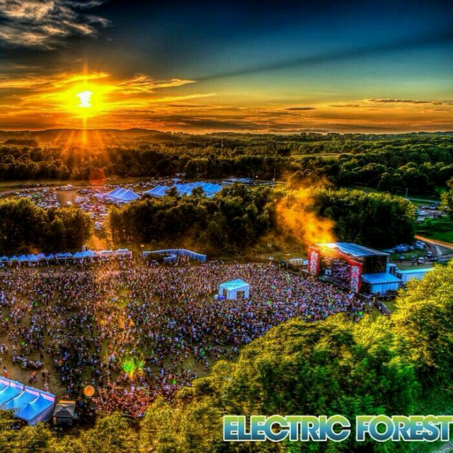 Follow Me to the Electric Forest