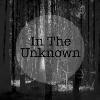 In The Unknown