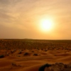 Desert Sun in Arabia